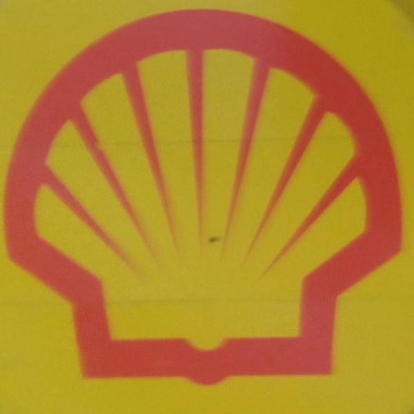Shell Vacuum Pump S3 RX100 - 209 Liter